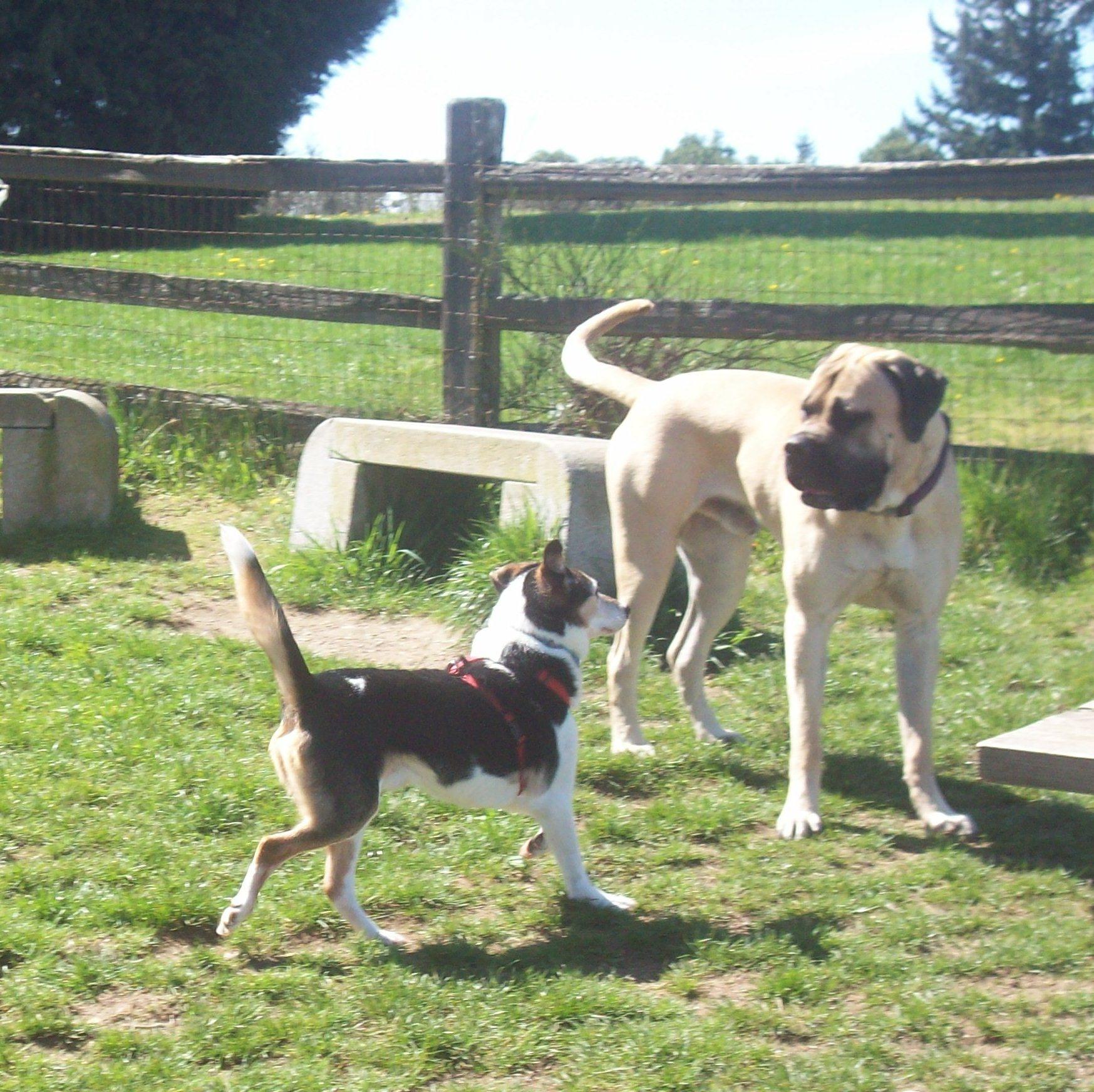 Howie meets Otis